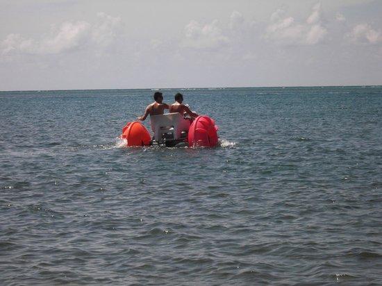 Palm Beach Roatan: trattore acquatico