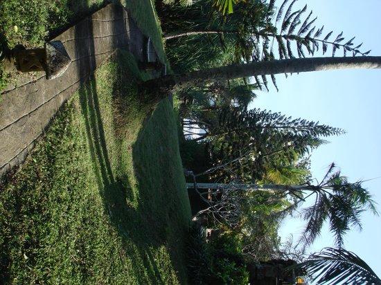Gajah Mina Beach Resort: Les jardins
