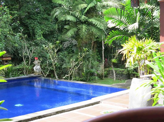 Dewangga Bungalow: Love this pool with its statue with fresh red hibiscus behind its ear every day