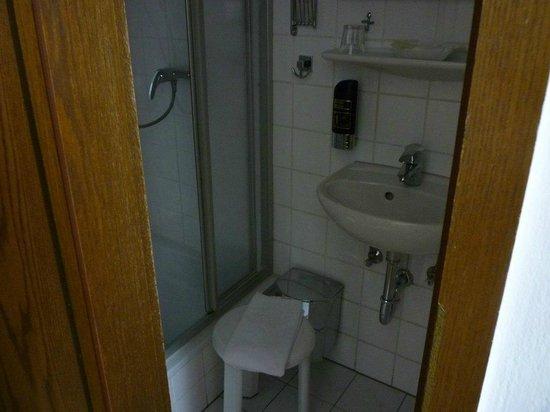 Hotel Italia: シャワーと洗面。