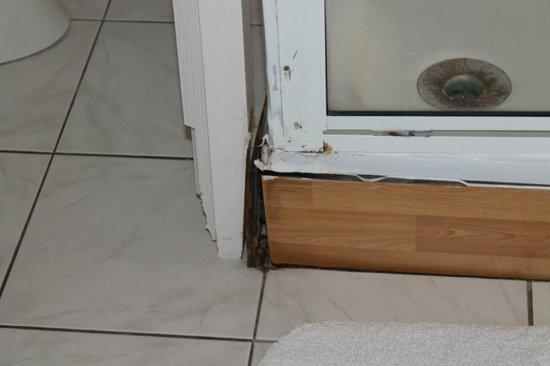 Hotel 't Hert : deze buitenkant van de douche is ook aan vervanging toe , stond ook in de zelfde ruimt van ons b