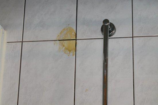 Hotel 't Hert : ik wil niet weten wat dit was in de douche!!!
