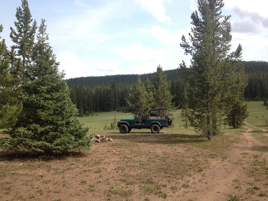 Timberline Tours: the clearing up the mountain