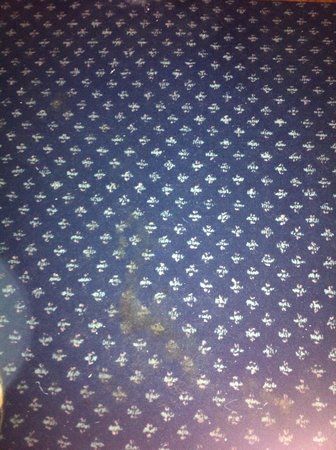 Hotel Mirific Opera : stained carpet in room