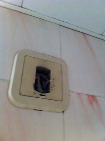 Hotel Mirific Opera : vent in bathroom