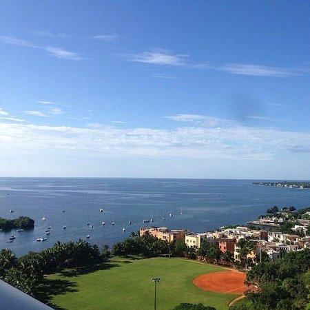 Sonesta Coconut Grove Miami: room view from the balcony