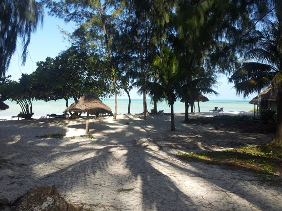 Ndame Beach Lodge Zanzibar: The view of the beach from our room