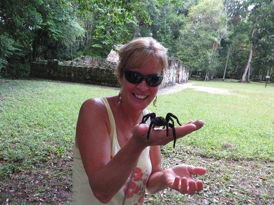 Gran Plaza: tarantula friend