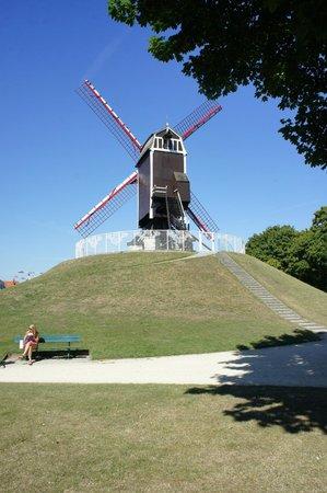 Quasimundo Bike Tours : Bike Tour