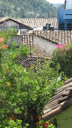 Mayan Inn: Lush gardens abound