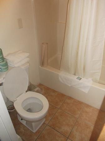 Knights Inn Pulaski: Salle de bain convenable au 17 août 2013.