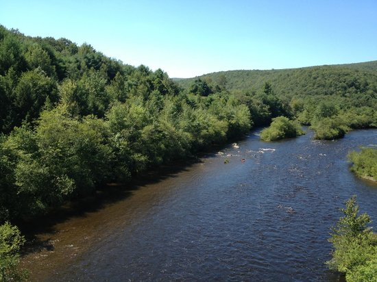 Lehigh Gorge Scenic Railway: View of the river