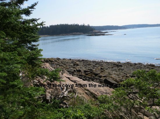 Goose Cove Lodge: Walking Trail