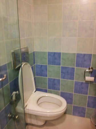 Grand Hometel, Mumbai : Bathroom