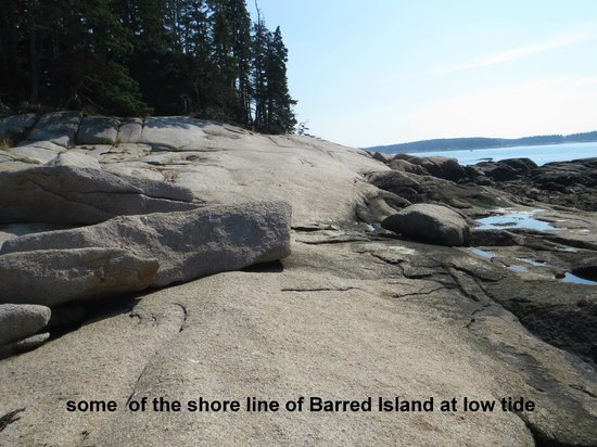 Goose Cove Lodge: Barred Island