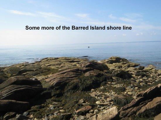 Goose Cove Lodge: Barred Island