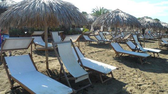 Florida Beach Club: Lettini sulla spiaggia