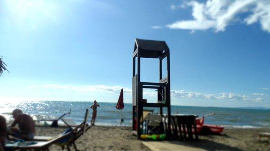 Florida Beach Club: Panorama