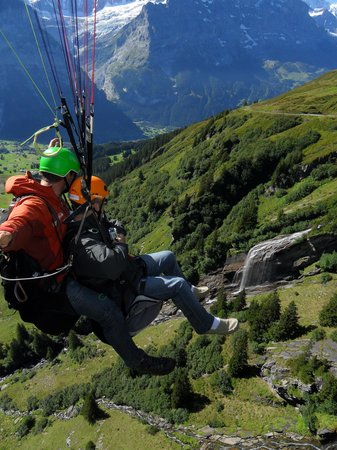 Grindelwald, Suiza: High Above the Trees