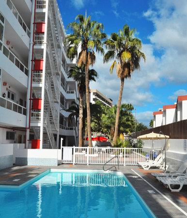 Apartamentos calma updated 2018 hotel reviews price comparison playa del ingles gran - Apartamentos en playa del ingles baratos ...