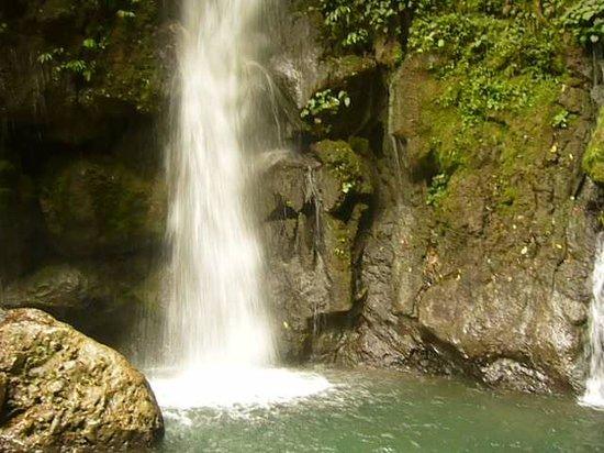 Tingo Maria National Park