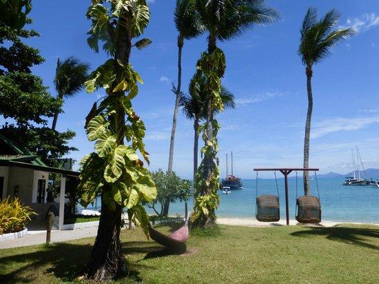 Samui Pier Resort : Le jardin