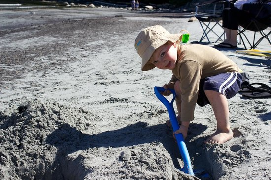 The Lodge at Weirs Beach : The kids loved digging and exploring.  We brought our own sand toys.