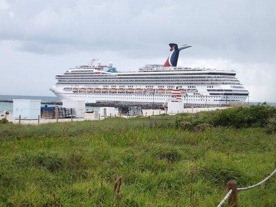 Cruise Ship Leaves The Port Of Miami Picture Of South Pointe Park Miami Beach Tripadvisor