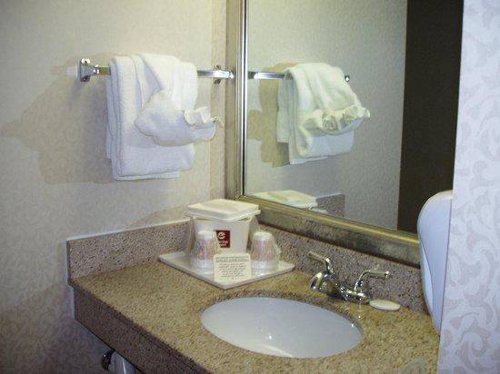 Black Bear Inn & Suites: handicapped bathroom