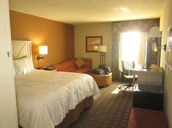 Hampton Inn Austin-Round Rock: The room from the entrance
