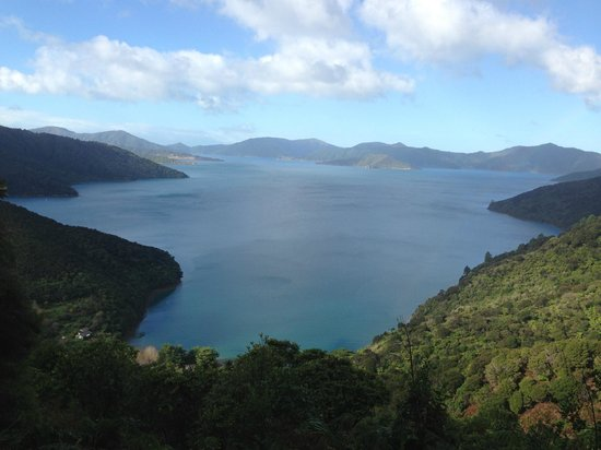Queen Charlotte Track: Lunch stop viewpoint