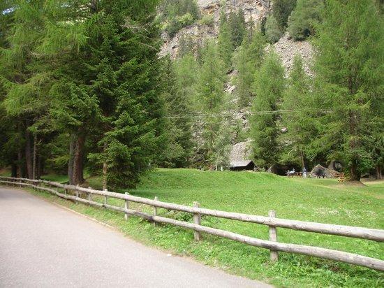 Cogolo, Włochy: strada per Il Lago Pian Palu