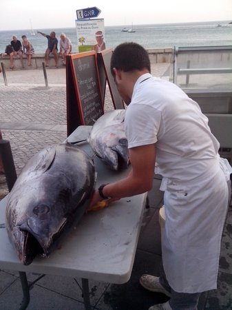 Ribamar : Tonno appena pescato