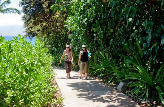 Wailea Beach path