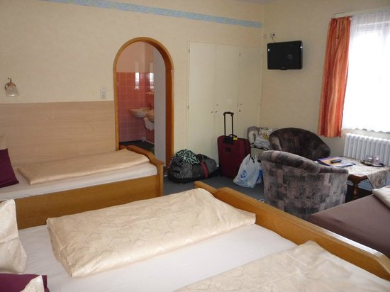 Hotel-Gasthof Schwarzes Lamm : Double room