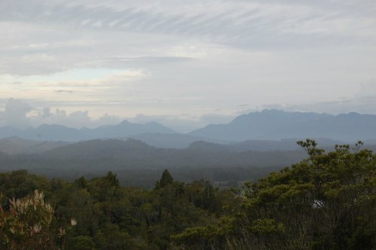 Rimu Lodge : The gorgeous view