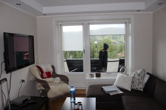Geilo Gaarden: View of the living room