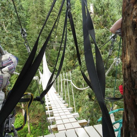 Alaska Canopy Adventures: One of the three suspension bridges