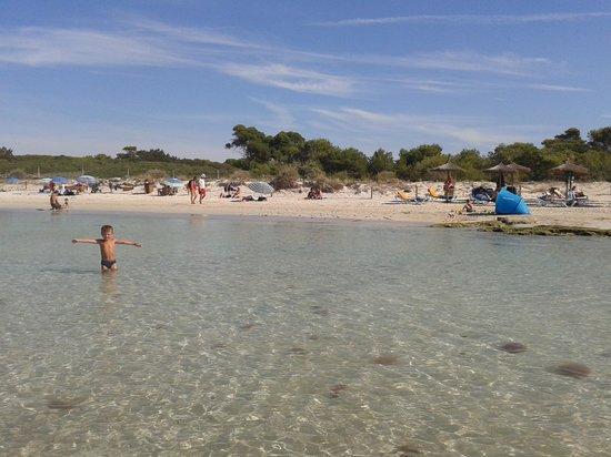 Aparthotel & Hotel Isla de Cabrera: playa es dolc a 400 mt da hotel