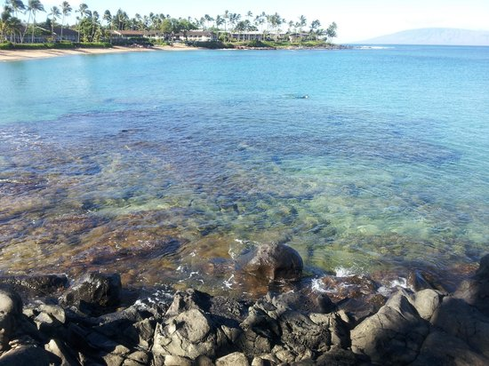 Napili Kai Beach Resort: hotel bay, wow!