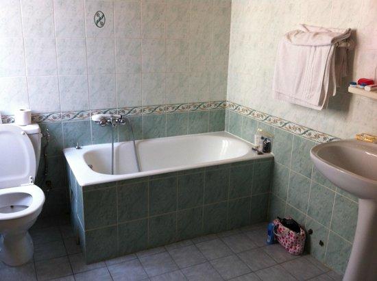 Hotel du Levant : Bath/shower - good sized bathroom