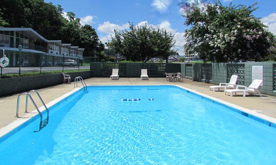 Colony House Motor Lodge: Pool