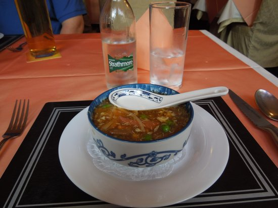 Hong Kong City Restaurant: Hot and sour soup