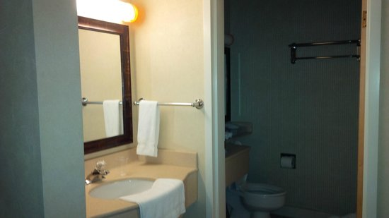 Holiday Inn Express Hotel & Suites Burlington South: Sink Area and Shower Room