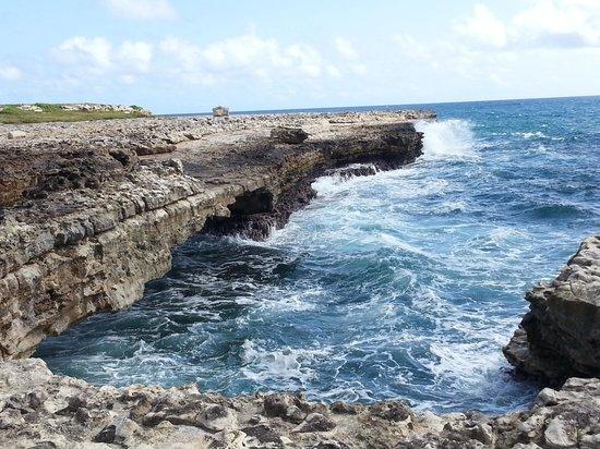 Luxury Safari Antigua: devil's bridge