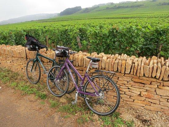 Bourgogne Randonnées : The bikes having a bit of a rest