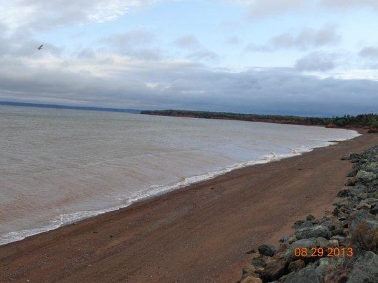 Four Seasons Retreat: Beach at mid-tide