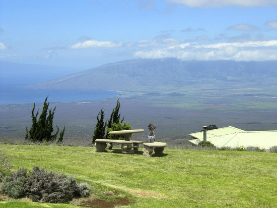 Ali'i Kula Lavender Farm: the view from the hill