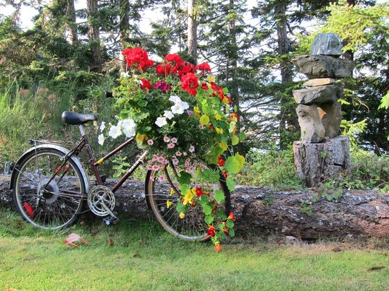 Arbutus Cove Guesthouse: Kathy has a knack for art.