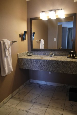 Avenue Suites Georgetown: bathroom vanity